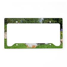 9-17-11 h License Plate Holder