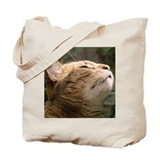 Animal Muse Cat Cards Tote Bag