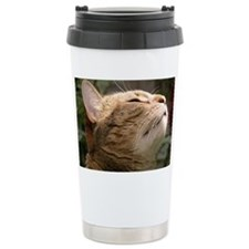 Animal Muse Cat Cards Travel Mug