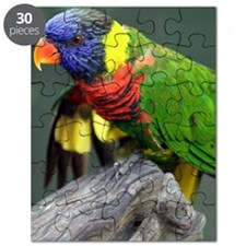 Blue Head Bird Puzzle