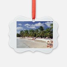Caribbean, Aruba, Sonesta Island. Ornament