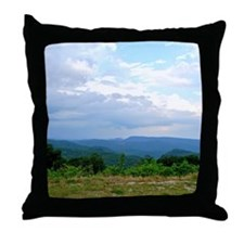 brown2 Throw Pillow