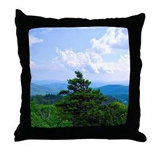 blue1 Throw Pillow