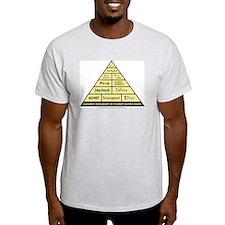 Maslow's Student Nurse Hierarchy T-Shirt