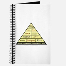 Maslow's Student Nurse Hierarchy Journal