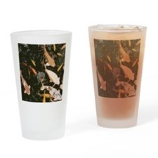 koiipadsleeve Drinking Glass