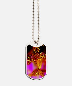 Fabulous Floral Dog Tags