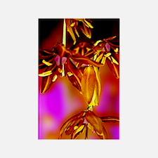 Fabulous Floral Rectangle Magnet