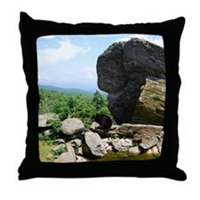 bear2 Throw Pillow