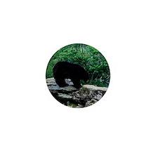 bear11 Mini Button