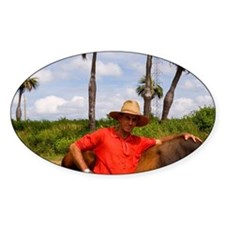 Farmer with oxen in tobacco fields  Decal
