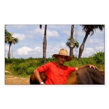 Farmer with oxen in tobacco fi Decal