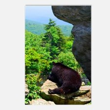 bearjour1 Postcards (Package of 8)