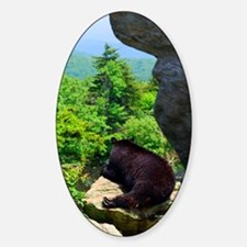 bearjour1 Sticker (Oval)