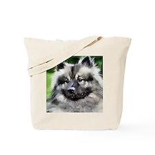 keeshond calendar Tote Bag