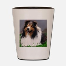 sheltie art canvas Shot Glass