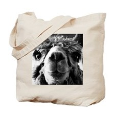 11x11 say cheese Tote Bag