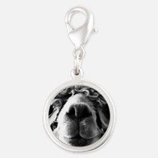 11x11 say cheese Silver Round Charm