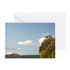 Pohutukawa Trees and Whitianga Passe Greeting Card