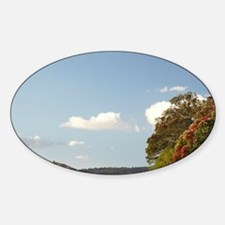 Pohutukawa Trees and Whitianga Pass Sticker (Oval)