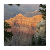 Grand canyon Drink Coasters