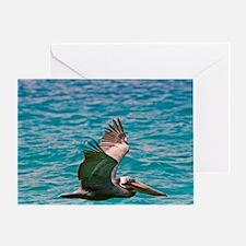 The Brown Pelican ( Pelecanus Occide Greeting Card