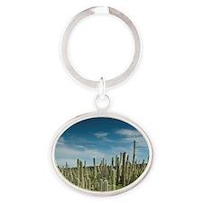 Datu Cactus (Ritterocereus griseus), Oval Keychain