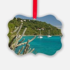 White Bay. Popular moorings for b Ornament