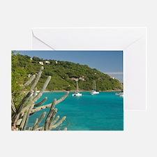 White Bay. Popular moorings for bare Greeting Card