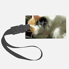 Sleeping Kitty Luggage Tag