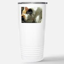 Sleeping Kitty Travel Mug