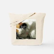 Sleeping Kitty Tote Bag