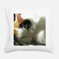 Sleeping Kitty Square Canvas Pillow