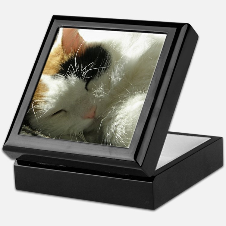 Sleeping Kitty Keepsake Box