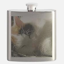 Sleeping Kitty Flask