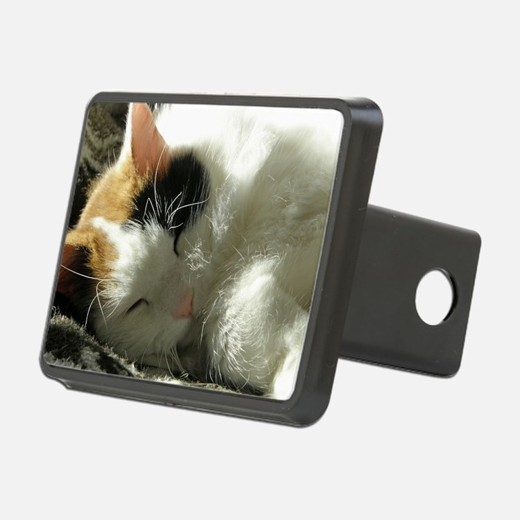Sleeping Kitty Hitch Cover