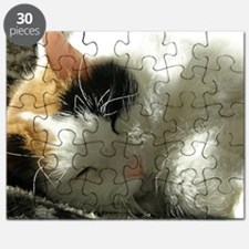 Sleeping Kitty Puzzle