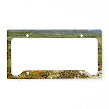 DSC00574 License Plate Holder