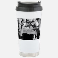 Border Collie w/cows Stainless Steel Travel Mug