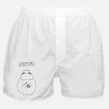 hookopotamus Boxer Shorts