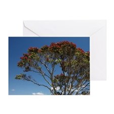 Pohutukawa tree and beach, Kuaotunu, Greeting Card