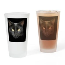 Dangerously Beautiful Black Cat Drinking Glass