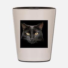 Dangerously Beautiful Black Cat Shot Glass