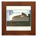 Dog tired Framed Tile