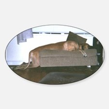 Dog tired Oval Decal