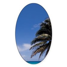 Beautiful blue water and beaches wi Decal