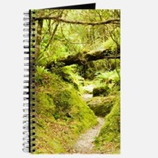Westland National Park. Copland Track wind Journal
