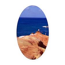 Red Rock, Pointe Baptiste, Calibis Oval Car Magnet