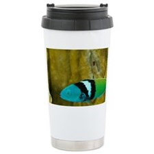 Bluehead (Thalassoma bifasciatu Travel Mug