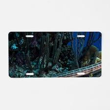 Trumpetfish (Aulostomus mac Aluminum License Plate